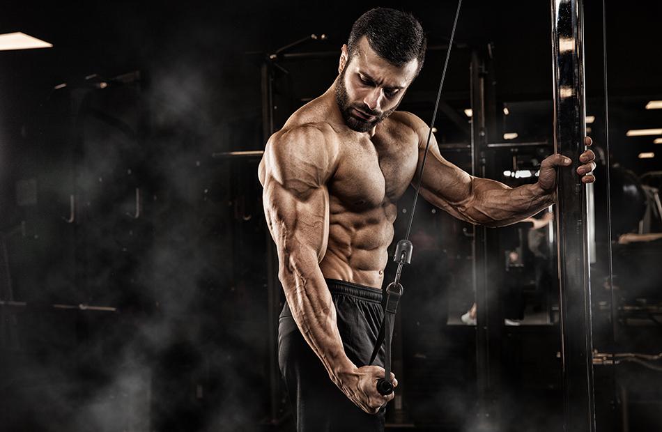 Rast svalovej hmoty