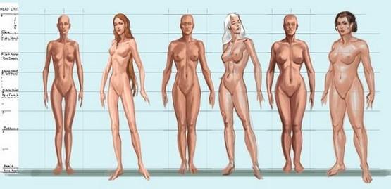 Telesné typy